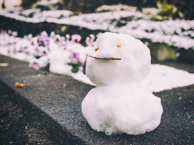 ⛄明日は雪Σ(・□・;)⛄