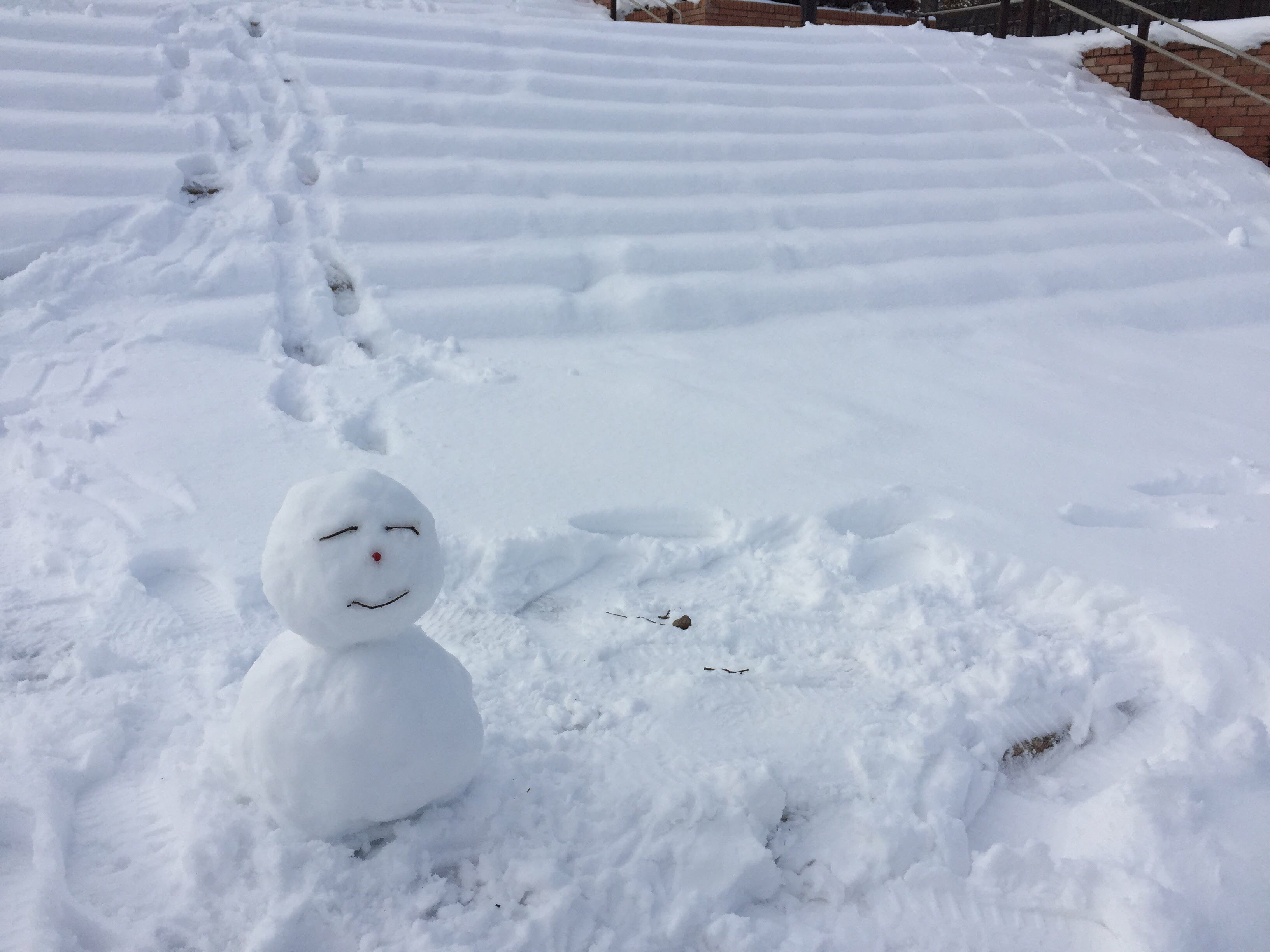 明日は雪予報!?