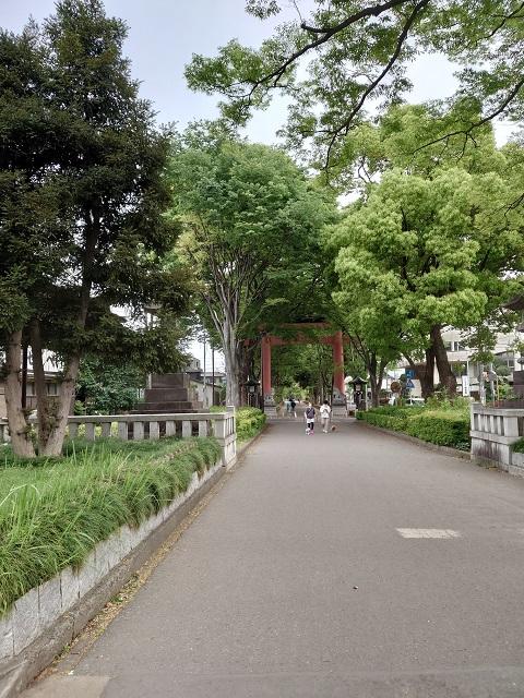 初夏の武蔵一宮