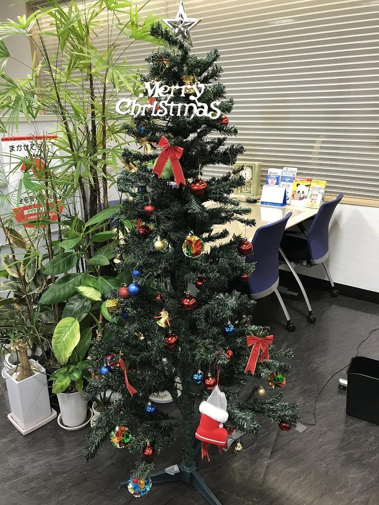 クリスマスツリーを出しました♪