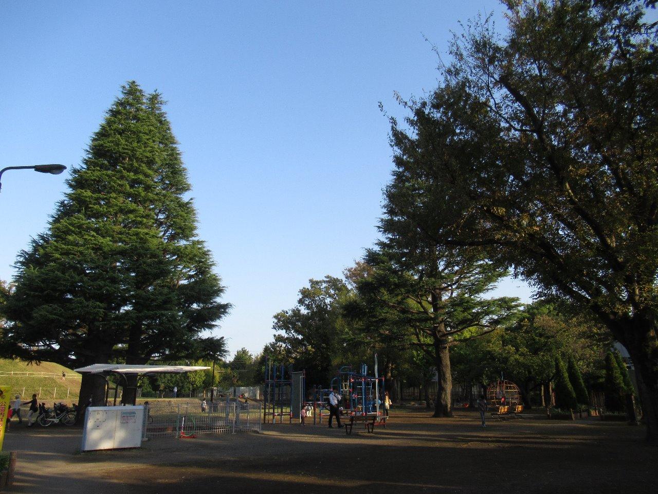 2019.11.3 ~玉川野毛町公園~