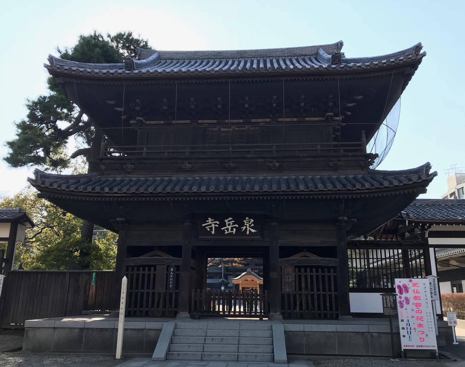 泉岳寺の桜