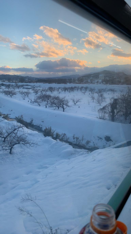 雪(*'ω' *)