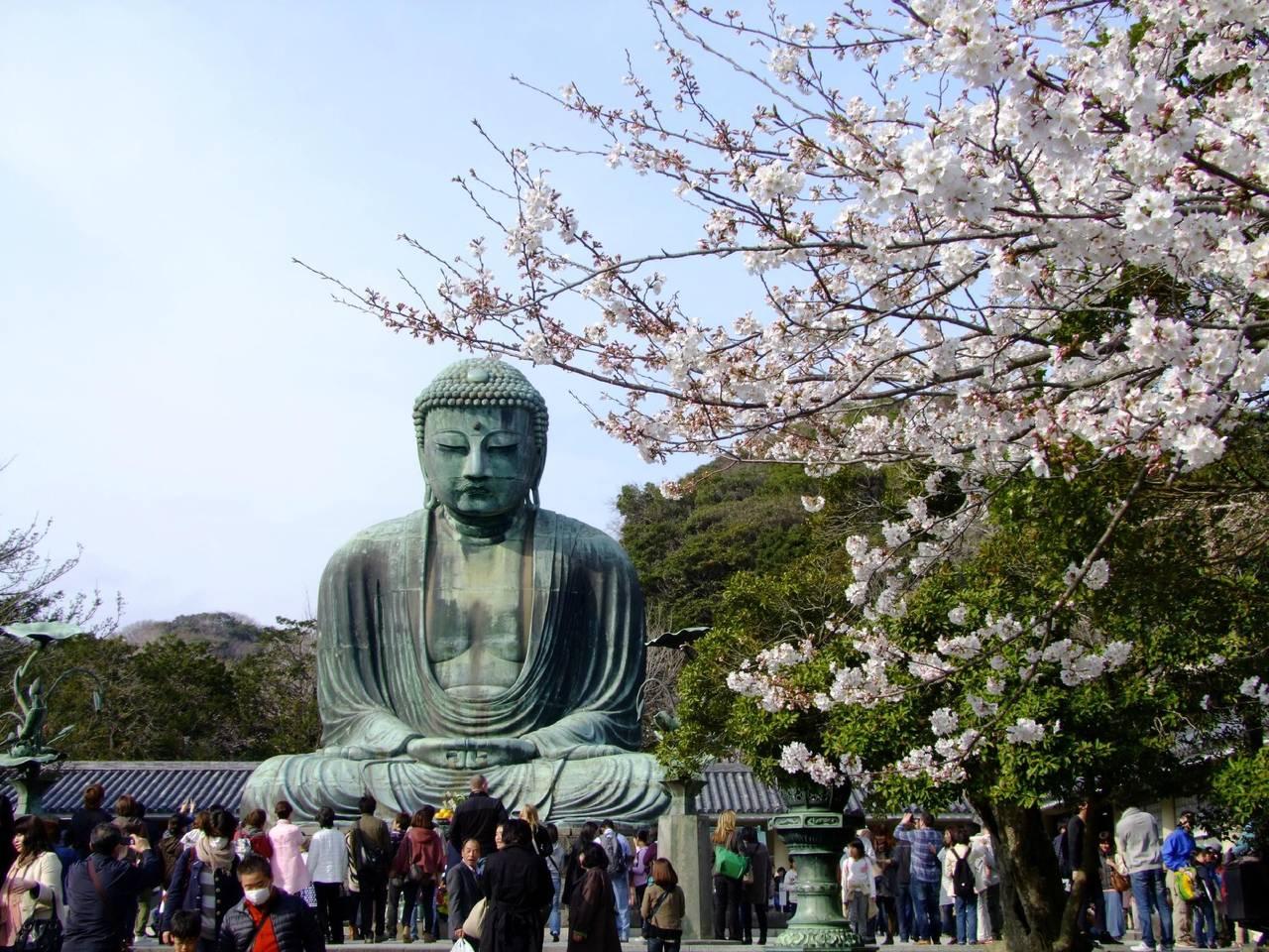 NewKamakura 7on foot,Yokohama,観光に便利な場所,新築物件,Wifi付