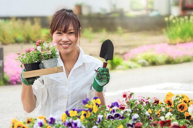 ゼロから始めるガーデニング♪春に植えるおすすめの花は?