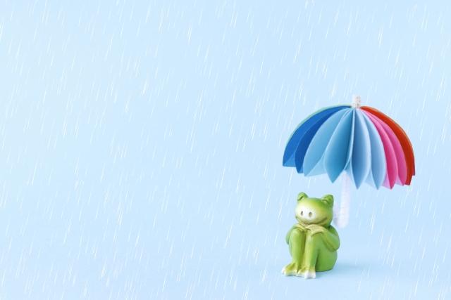 梅雨時期の換気不備による表装の劣化は入居者負担