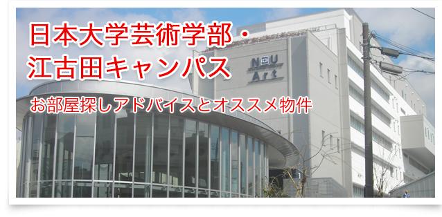 日本大学(江古田キャンパス)~お部屋探しアドバイス~