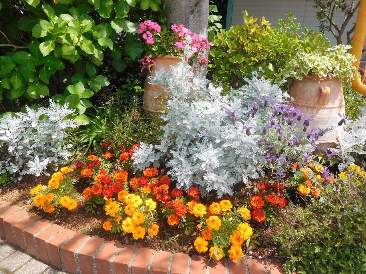 お庭を楽しめる��中古住宅 特集��