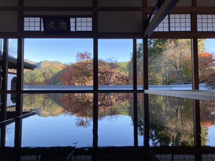 宝徳寺の床紅葉